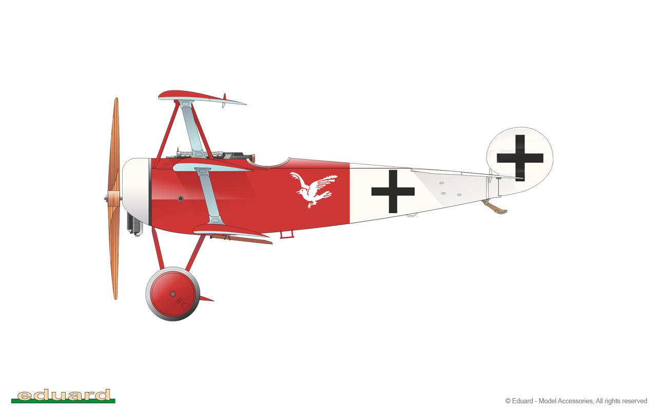 Fokker Dr. I 1/48 - 479/17 flown by Lt. A. Raben, Jasta 18, Montingen (Montoy – Flanville now), France, October 1918