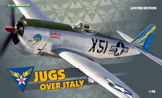 Jugs over Italy  1/48 1/48