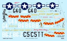 """P-51D-5 """"357th FG"""" 1/48"""
