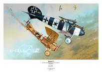 Плакат - Albatros D.V