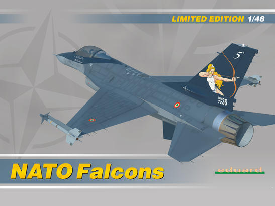 NATO Falcons 1/48