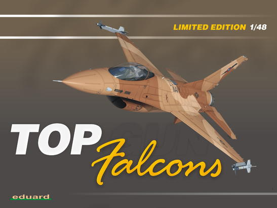Top Falcons 1/48