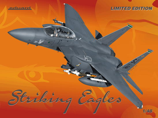 Striking Eagles 1/48