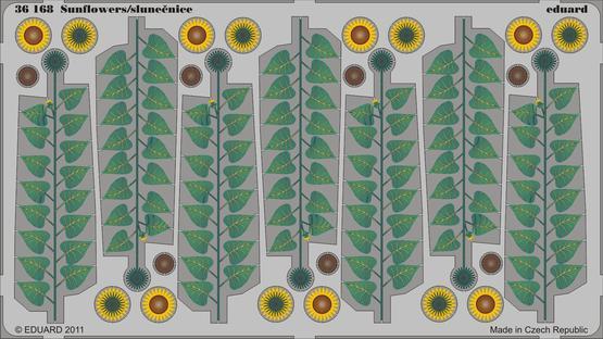 Sunflowers - colour 1/35