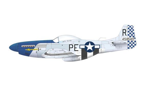 P-51D 1/144