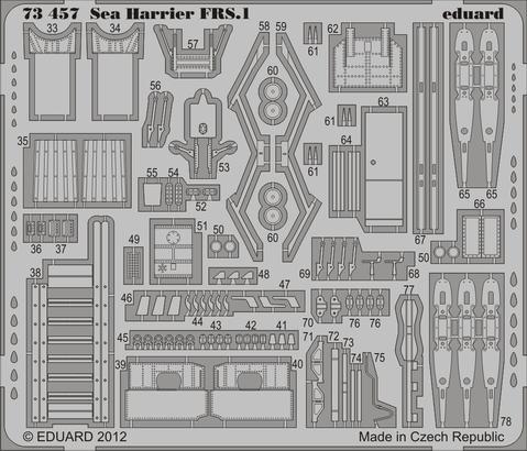 Sea Harrier FRS.1 S.A. 1/72