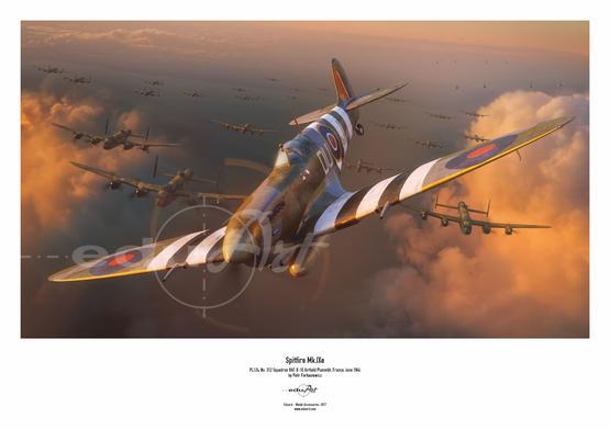 Poster - Spitfire Mk.IXe