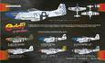P-51D Excalibur 1/48 - 2/2