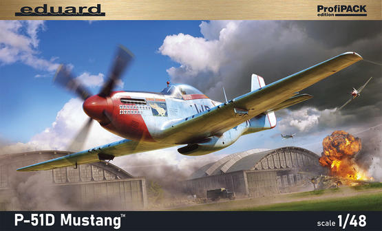P-51D Mustang 1/48  - 2