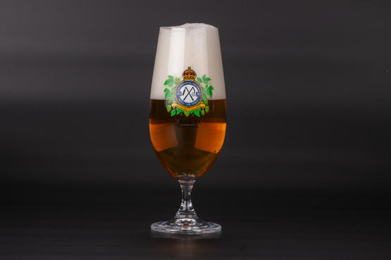 Liberator Beer Glass – No. 311 Squadron  - 2