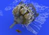 R-2800-10 engine 1/48 - 4/7