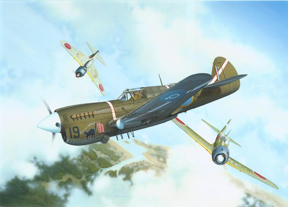 P 40m Warhawk 1 48 Eduard Store
